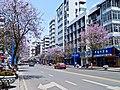 三中路 - panoramio (1).jpg
