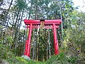 五條市小和町 御霊神社の鳥居 Shrine gate of Goryō-jinja, Owa-chō 2011.4.29 - panoramio.jpg