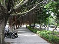 台北市建築物攝影 - panoramio - Tianmu peter (44).jpg