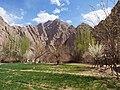 山村之春 - Spring in the Mountain Village - 2015.04 - panoramio.jpg