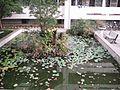 後勁國中水池 - panoramio.jpg