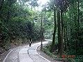 杭州. 杨梅岭(乾龙路) - panoramio (10).jpg