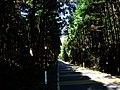 筑波山湯袋峠、真壁への道 - panoramio.jpg