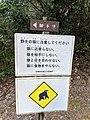 野生の猿に注意 (43773162130).jpg