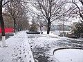 雪天的潍坊学院 2020-12-13 3.jpg