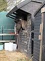 -2018-12-11 Stabled horse, Trimingham (1).JPG