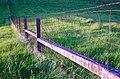 01-04-19, field - panoramio.jpg