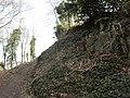 01 Höhingen Castle.JPG