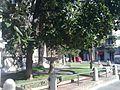 08019 1541 2011 09 17 Palau Casades detalls 1.jpg