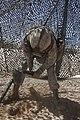 11th Marines Headquarters Desert Fire Exercise 130420-M-TP573-036.jpg