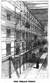 1884 DeerIsland2 Boston FrankLeslie SundayMagazine v15 no3.png