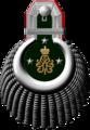 1898-ivma-e17.png