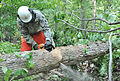 1st Battalion chops down trees during AT 110915-A--789.jpg