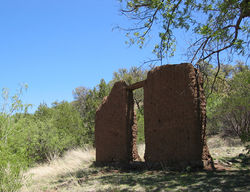 The crumbling walls of a red adobe structure jut up from a clearing in a desert forest. Dry grasses and undergrowth abound on the floor of the clearing, and branches from a nearby tree are encroaching on one corner of the structure's front wall.