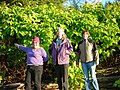 2011. Rochelle Desser (left) and two Tongass National Forest botanists with Japanese knotweed. Wrangell, Alaska. (36070047513).jpg
