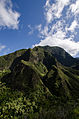2011 Oct 02 Iao Valley Mountainside.jpg