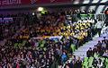 2011 boxing event in Stožice Arena-Navijaci I.jpg