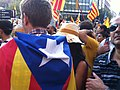 2012 Catalan independence protest (85).JPG