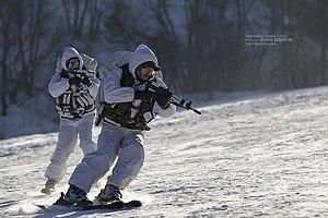 Republic of Korea Army Special Warfare Command - SWC operators using skiis to train in the snow