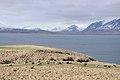 2014-04-28 09-42-07 Iceland - Akureyri Svalbarðseyri.JPG