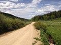 2014-06-24 14 04 56 View north along Elko County Route 748 (Charleston-Jarbidge Road) about 16.3 miles north of Charleston, Nevada.jpg