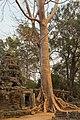 2016 Angkor, Banteay Kdei (10).jpg