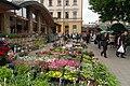 2017-05-25 Flower market, Soborna Square, Lviv.jpg