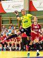 20170613 Handball AUT-ROU 8928.jpg