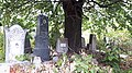 20171004 125830 Jewish cemetery in Bacău.jpg