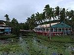2019-01-30 Pacific Harbour, Viti Levu, Fiji 1.jpg