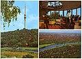 30054-Dresden-1975-Fernsehturm mit Gaststätte-Brück & Sohn Kunstverlag.jpg