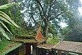 353, Taiwan, 苗栗縣南庄鄉獅山村 - panoramio (4).jpg