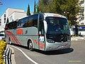 908 Leda - Flickr - antoniovera1.jpg