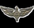 94-й батальон «Духифа́т».png