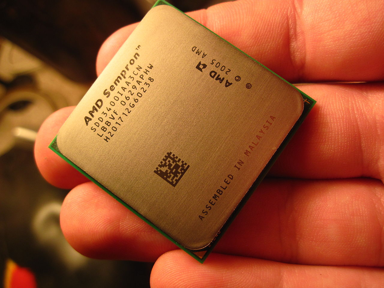 AMD SEMPRON 3400 DRIVERS FOR MAC DOWNLOAD