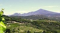 AOC Ventoux vignoble et mont Ventoux.jpg