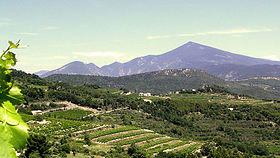 Image illustrative de l'article Ventoux (AOC)