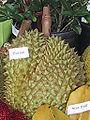 ARS Durian.jpg