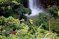 A Cachoeira Véu de Noiva é uma queda-d'água localizada no Parque Nacional da Chapada dos Guimarães, no estado brasileiro do Mato Grosso, a 12 quilômetros do centro da cidade da Chapada dos Guimarães.jpg