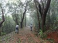 A nature trail at Matheran.jpg