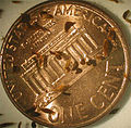 A picture of Convoluta convoluta with an American Penny for scale.jpg