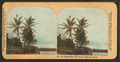 A picturesque Hawaiian railway scene, by H.C. White Co..png