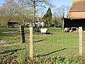 A rural idyll - geograph.org.uk - 340850.jpg