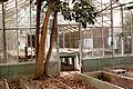 Abandoned Green House 1 (5772711136).jpg
