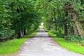Aboyne Castle driveway.jpg
