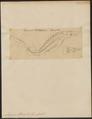 Acipenser sturio - 1700-1880 - Print - Iconographia Zoologica - Special Collections University of Amsterdam - UBA01 IZ14400027.tif