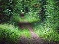 Ackling Dyke, Harley Down - geograph.org.uk - 1433952.jpg