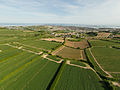 Aerial view of fields in St Clement, Jersey.jpg