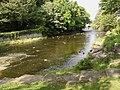 Afon Aeron, Aberaeron - geograph.org.uk - 593744.jpg