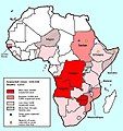 Africa cholera2008b.jpg